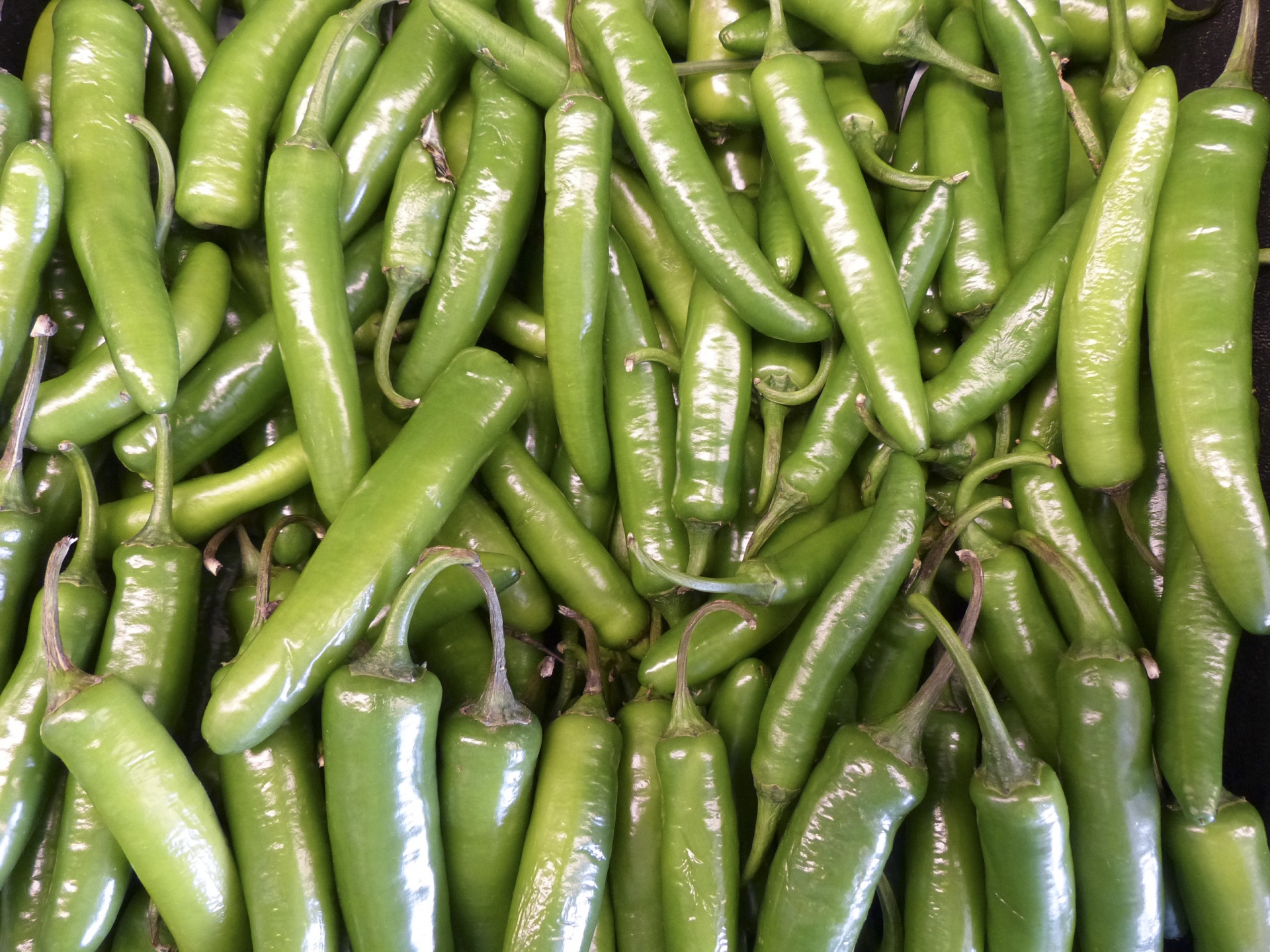 Hatch Chili Peppers