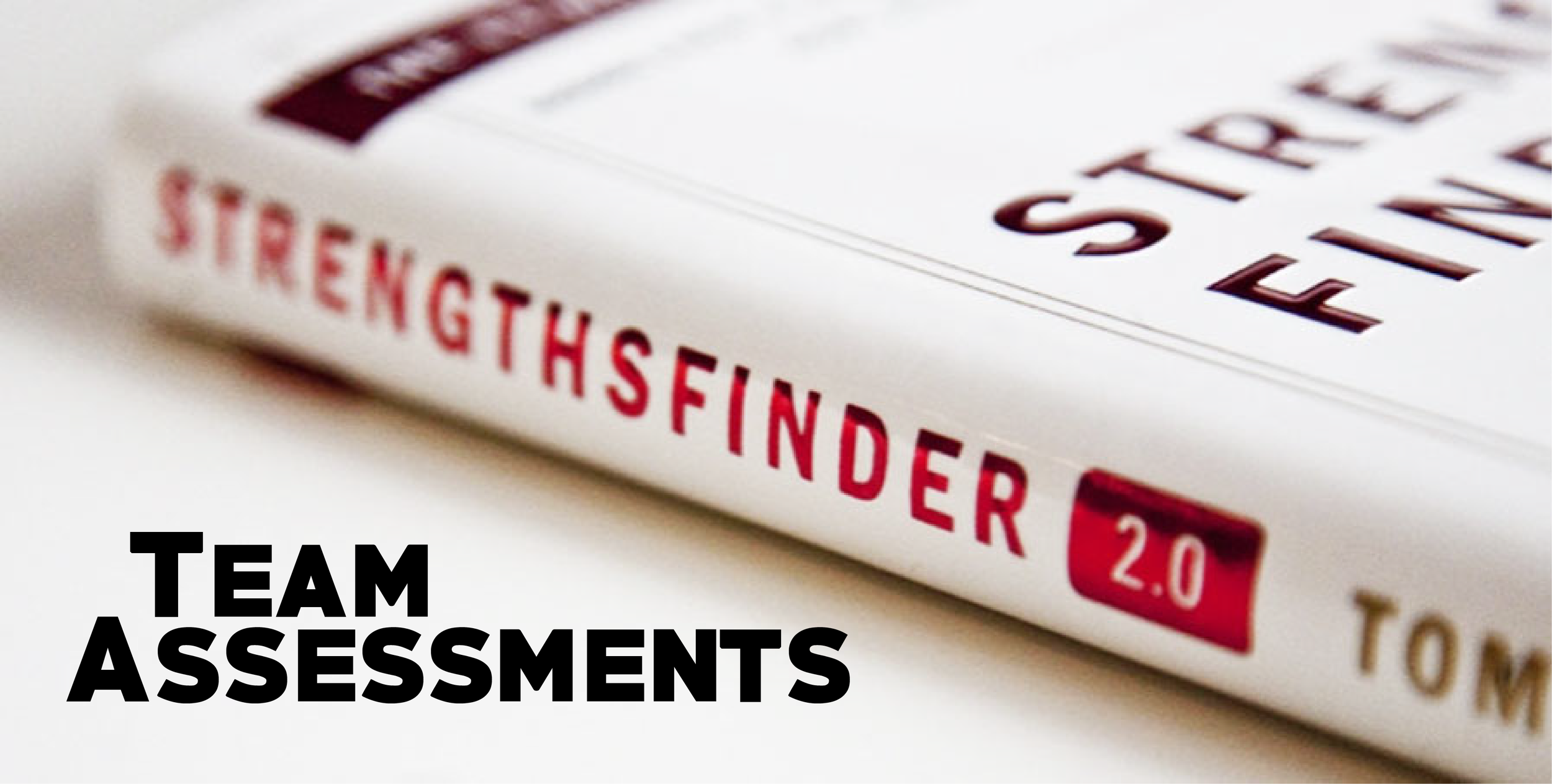 Click here to take the StrengthsFinder test. We'd love to help your team put it into practice.