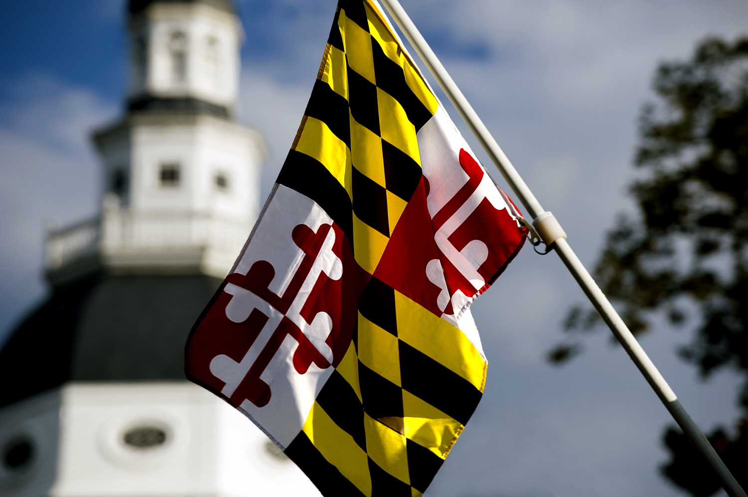 Maryland-State-Flag-at-State-House.jpg