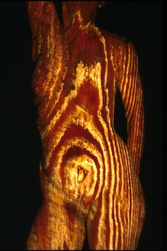 *woodgrain.jpg