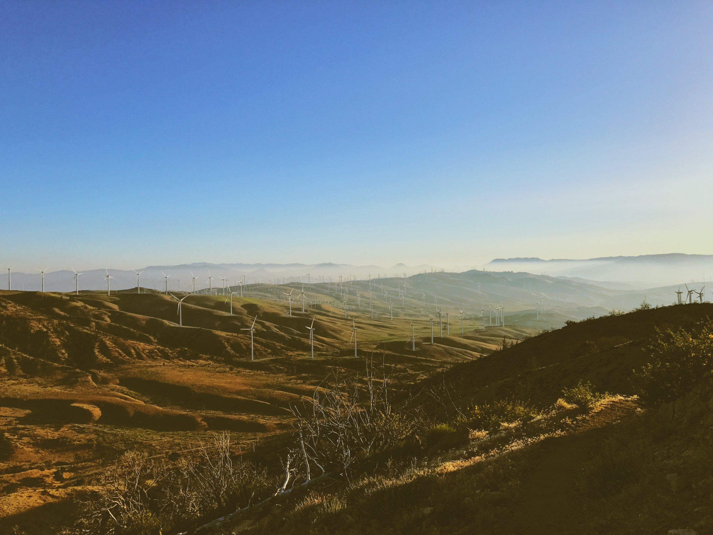 Tehachapi wind farms
