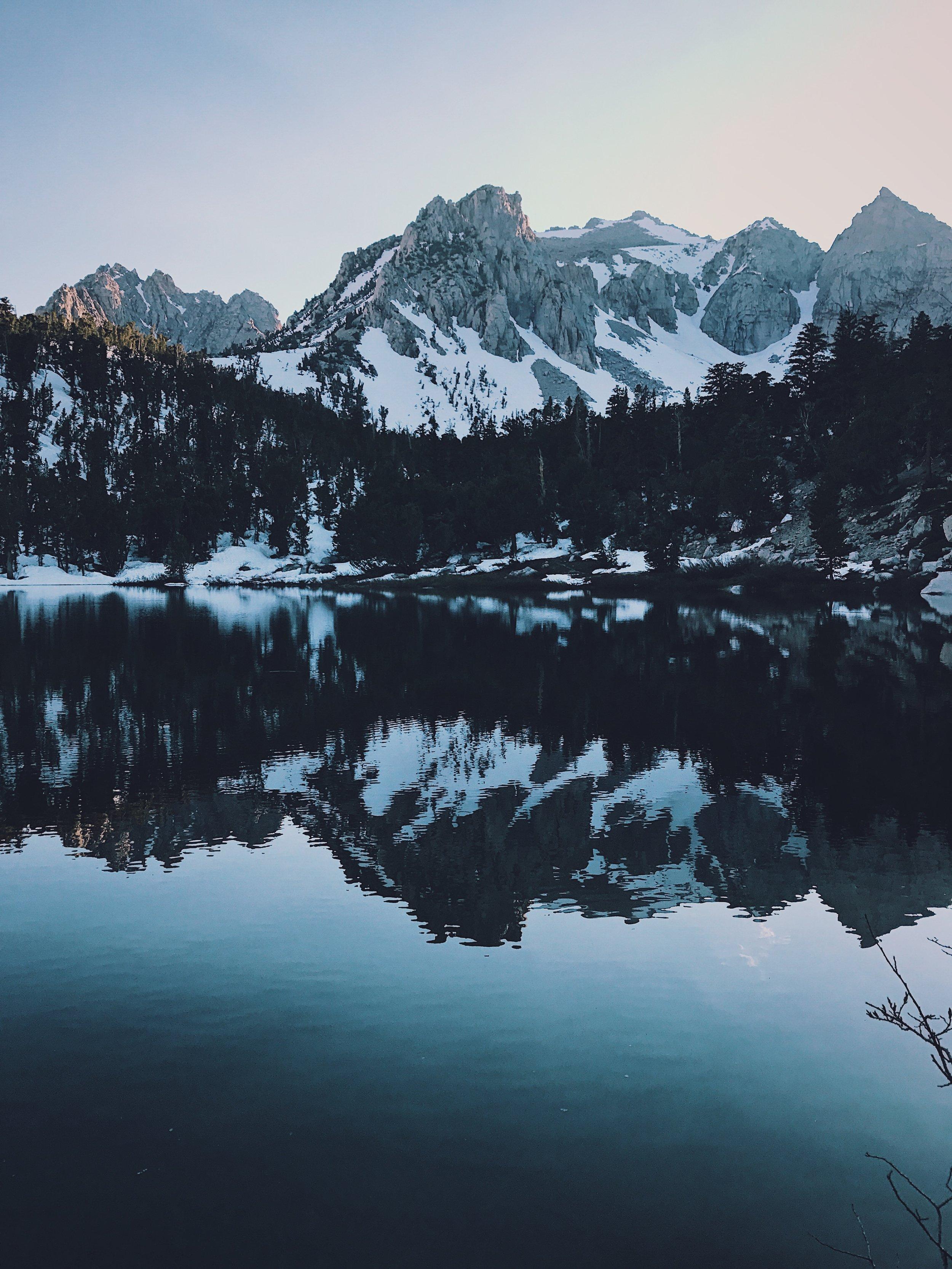 Flower lake reflections