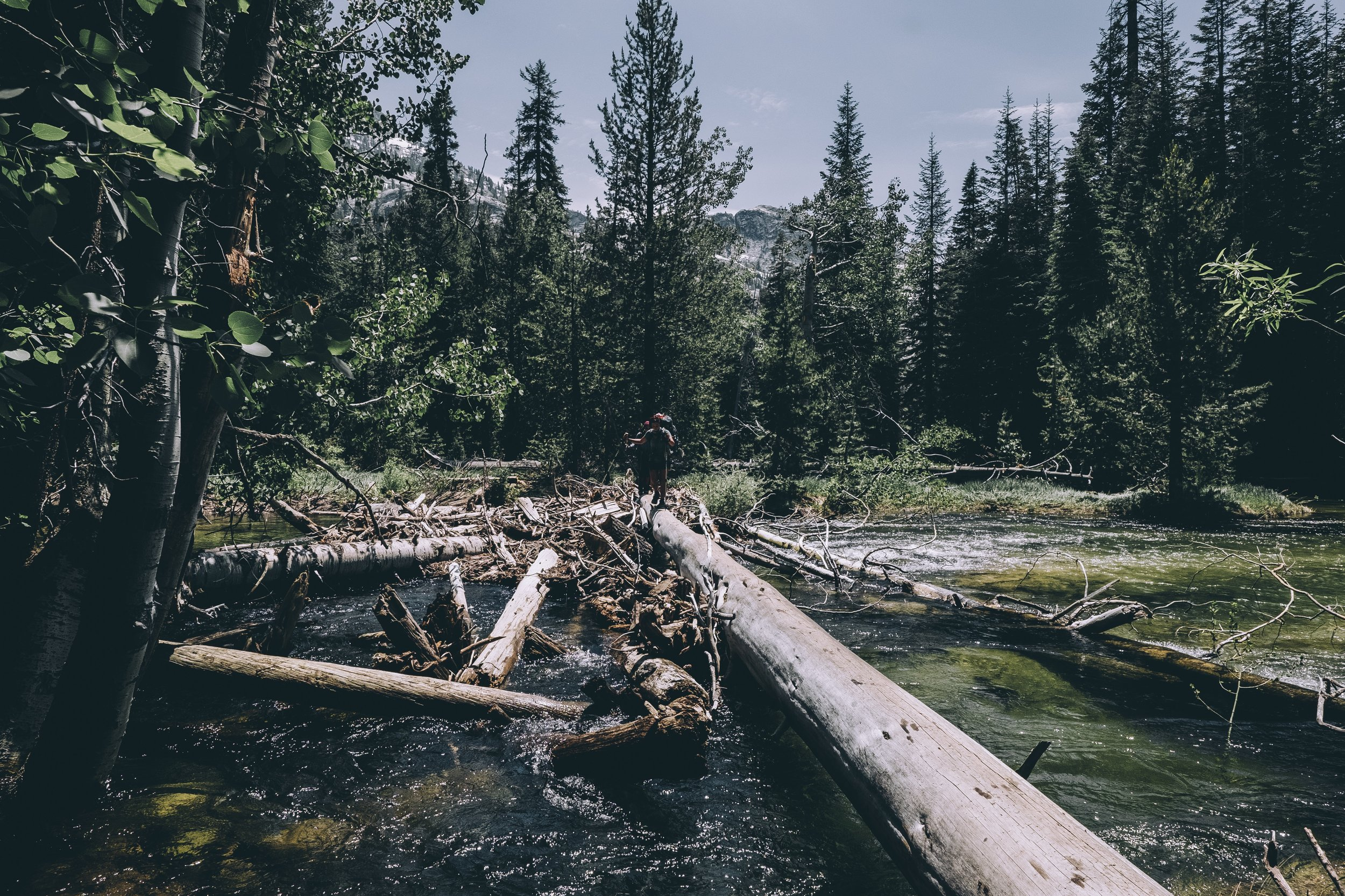crossing a log on piute