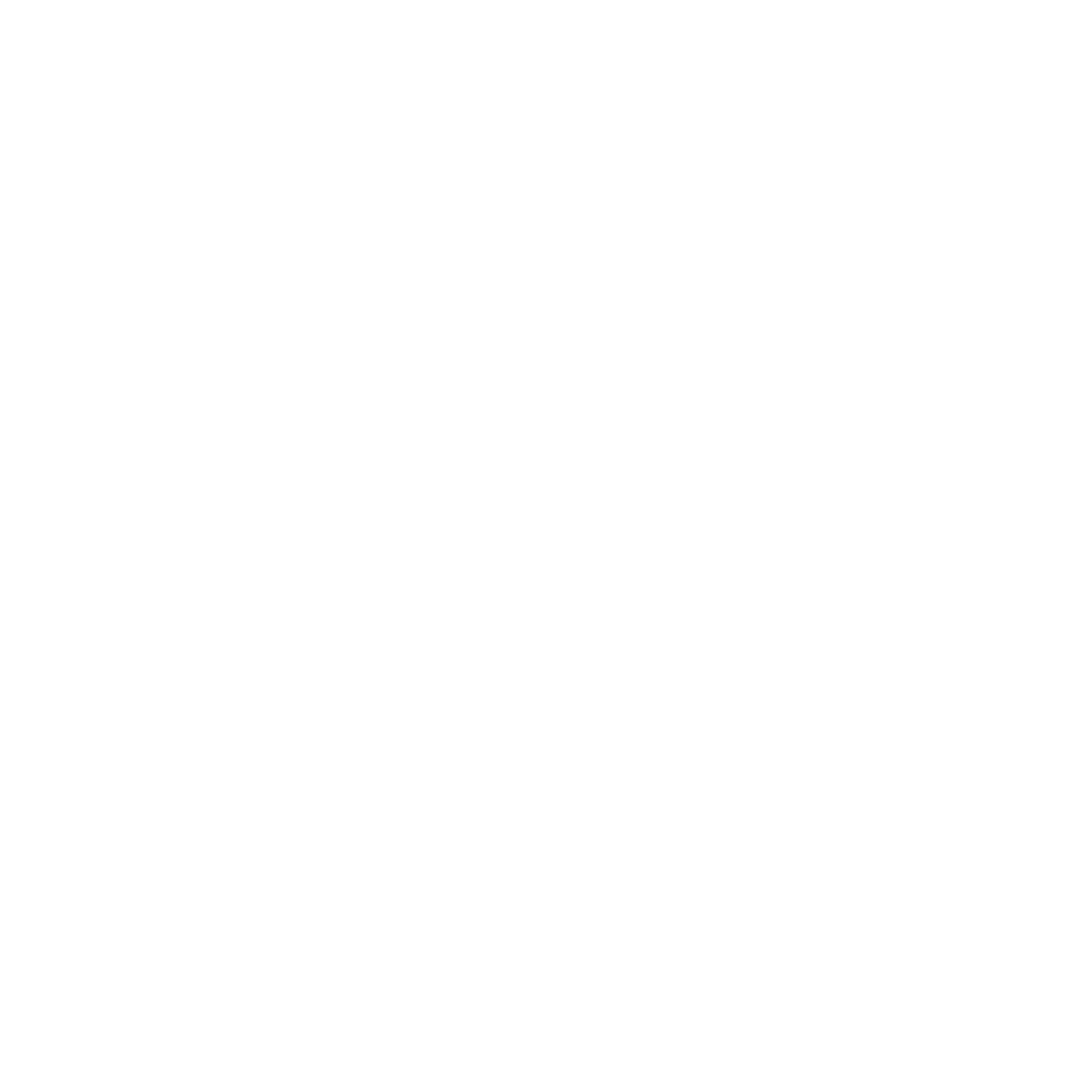 CAMSS WORLD_WHITE OUT .png