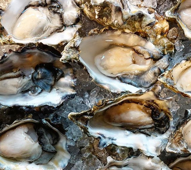 A week from today, Chef Bill Telepan of @oceananyc will join forces with Chef Paley for a 10-course sustainable seafood dinner at Headwaters 🐟 It all kicks off with an east coast vs. west coast oyster battle, and we can't wait. There are still a few seats left, and you can find the full menu and tickets at the link in our bio!⠀ ⠀ #HeadwatersPDX #pdx #portland #downtownpdx #pdxdining #pdxeats #pdxnow #eaterpdx #eater #travelportland #seafood #chefsofinstagram #onthetable #oysters #happeninginportland