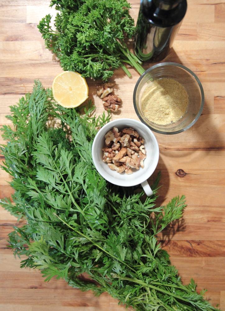 Pesto de verdures de carottes et noix de Grenoble