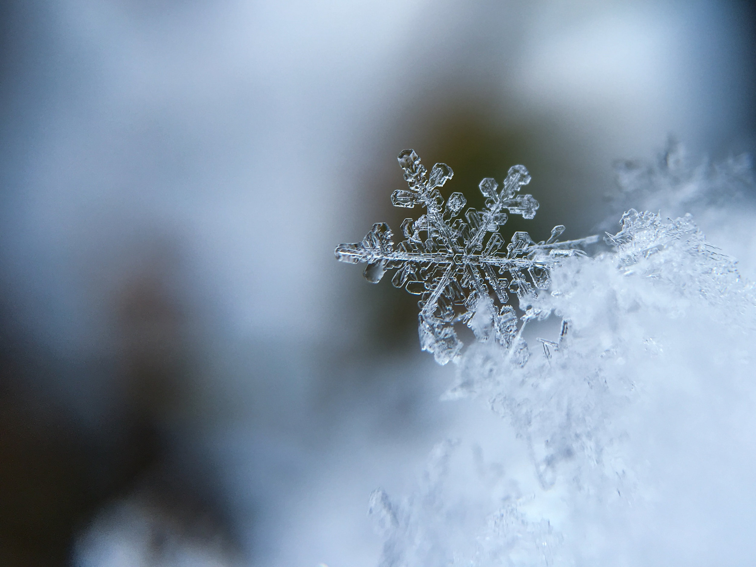 Olloclip Snowflake
