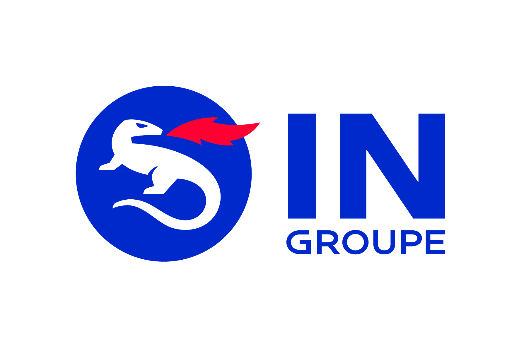 logo IN Groupe.jpg