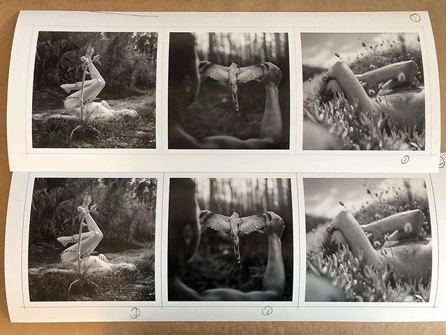 Test prints for @insleysmullen #art912 #blackandwhite