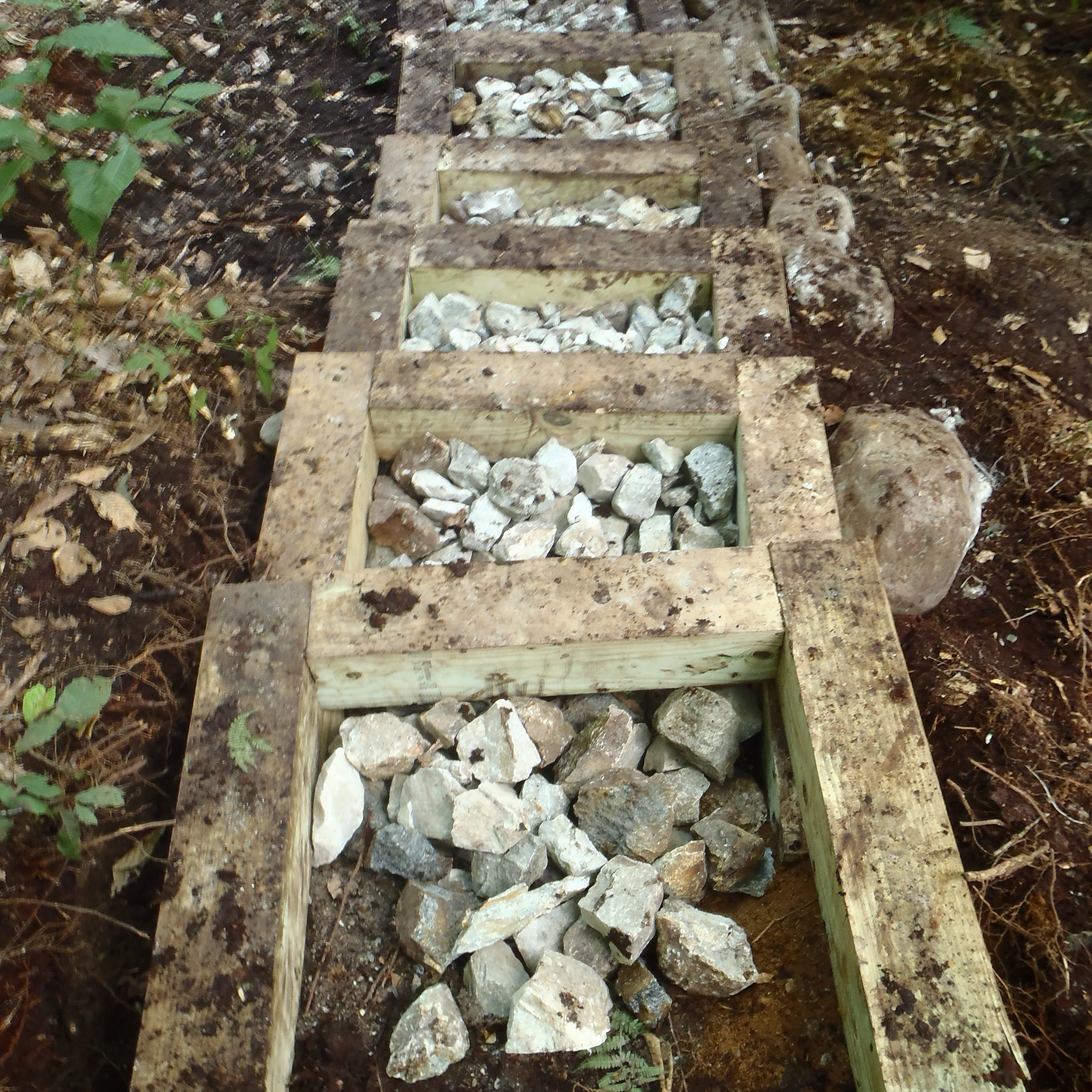 Wooden box steps in progress on the Forrest City Trail up Camel's Hump, VT.