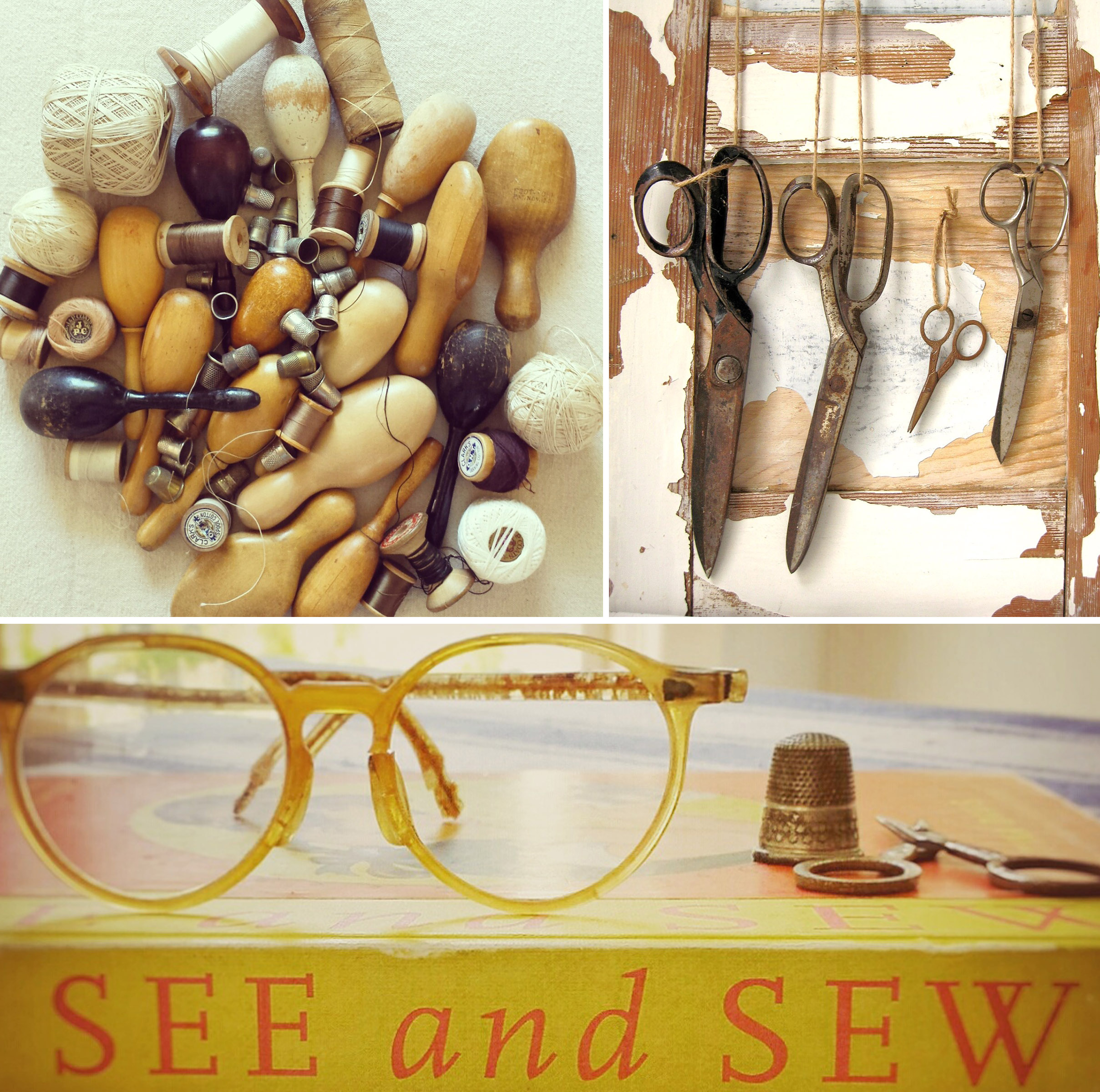 see and sew.jpg