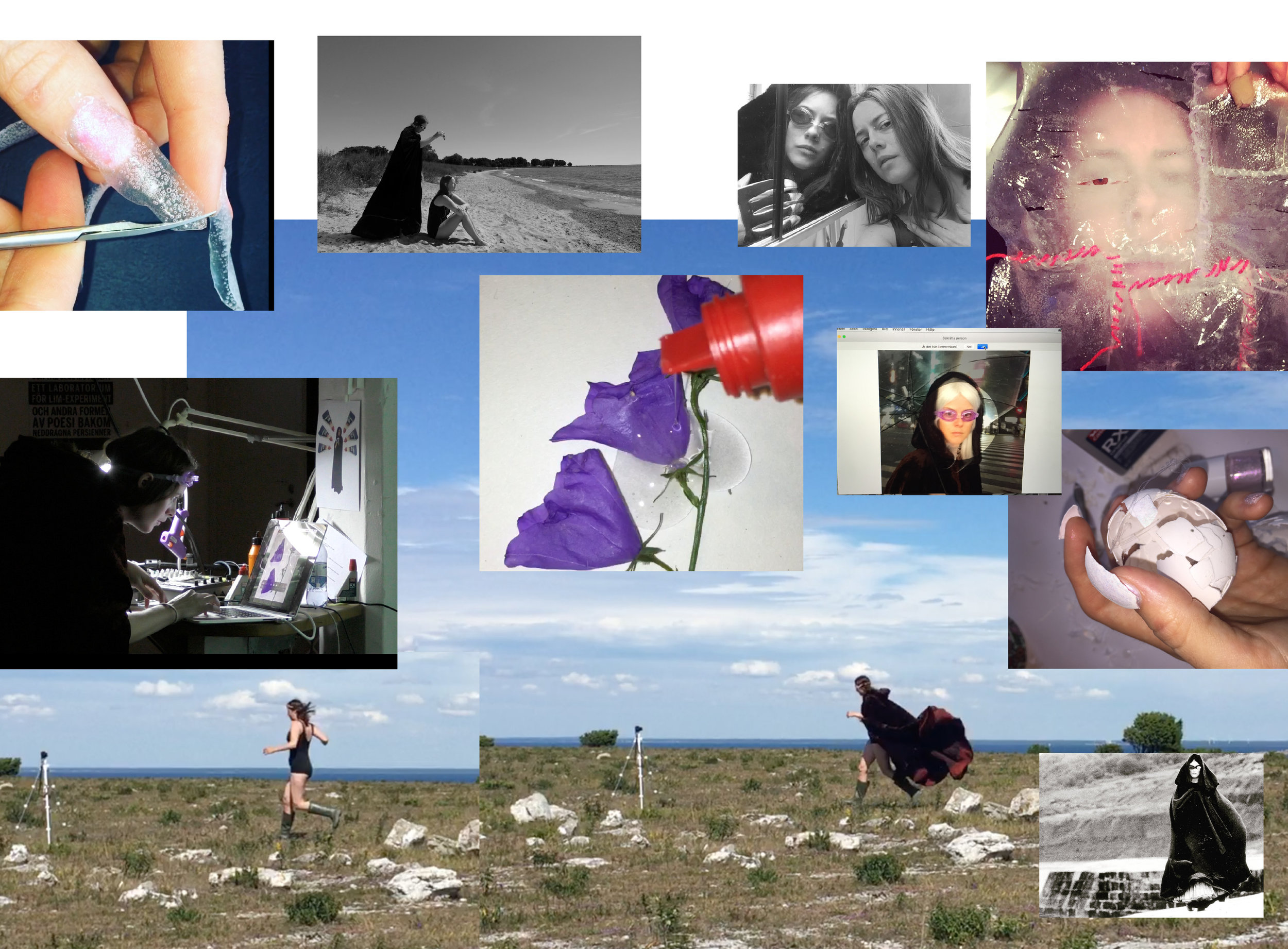 Limmerskan collage.jpg