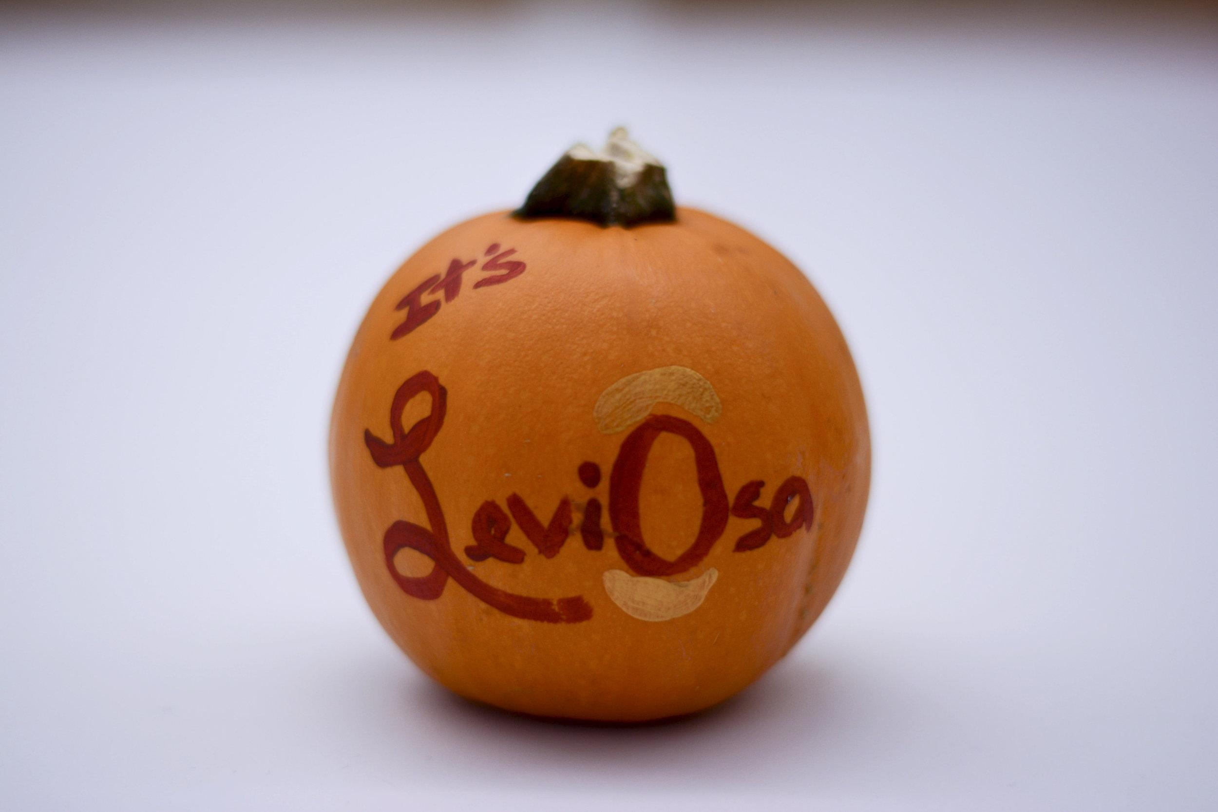 pumpkin23.jpg