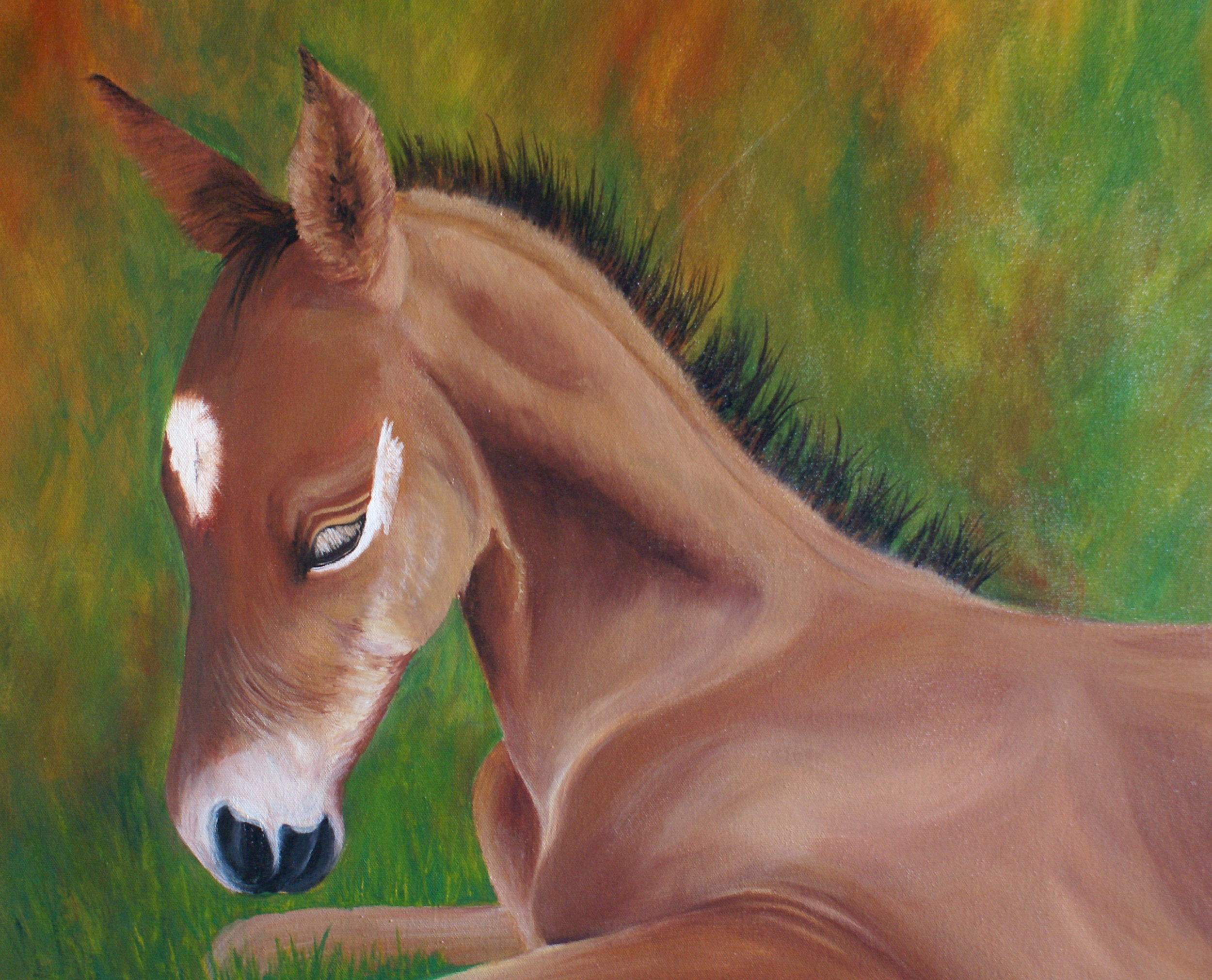 "#18 ""Foal in the Grass"" $450"