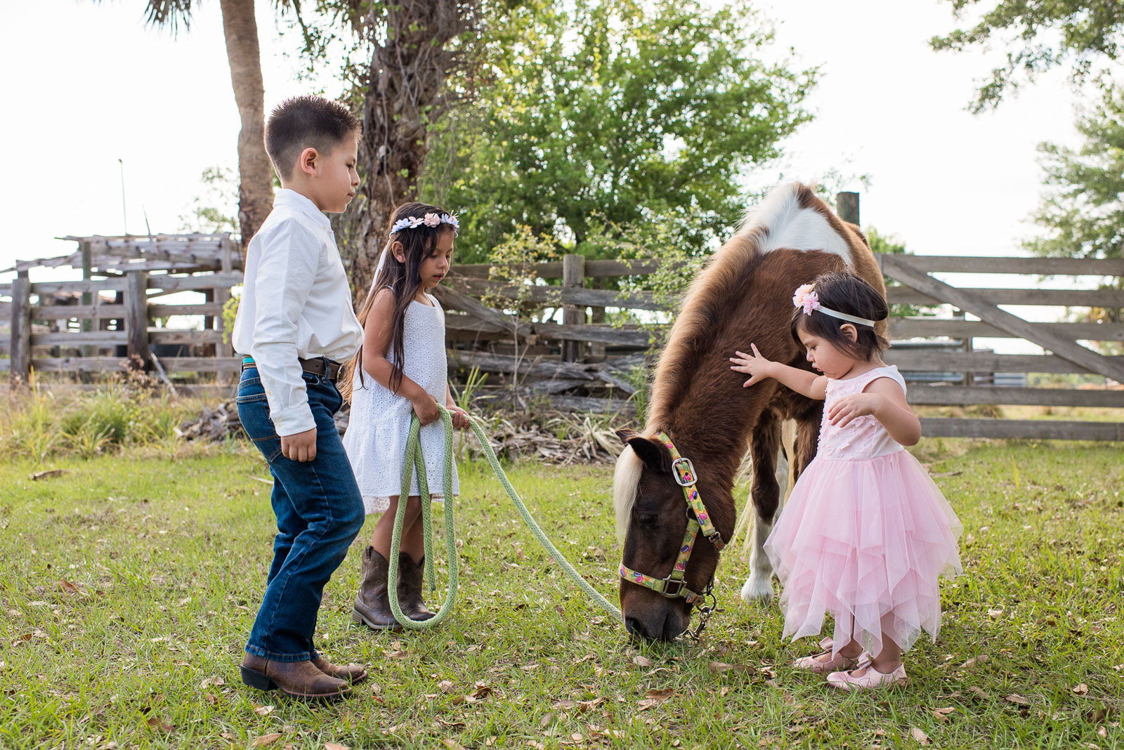 photo-sessions-children-horse-01.jpg