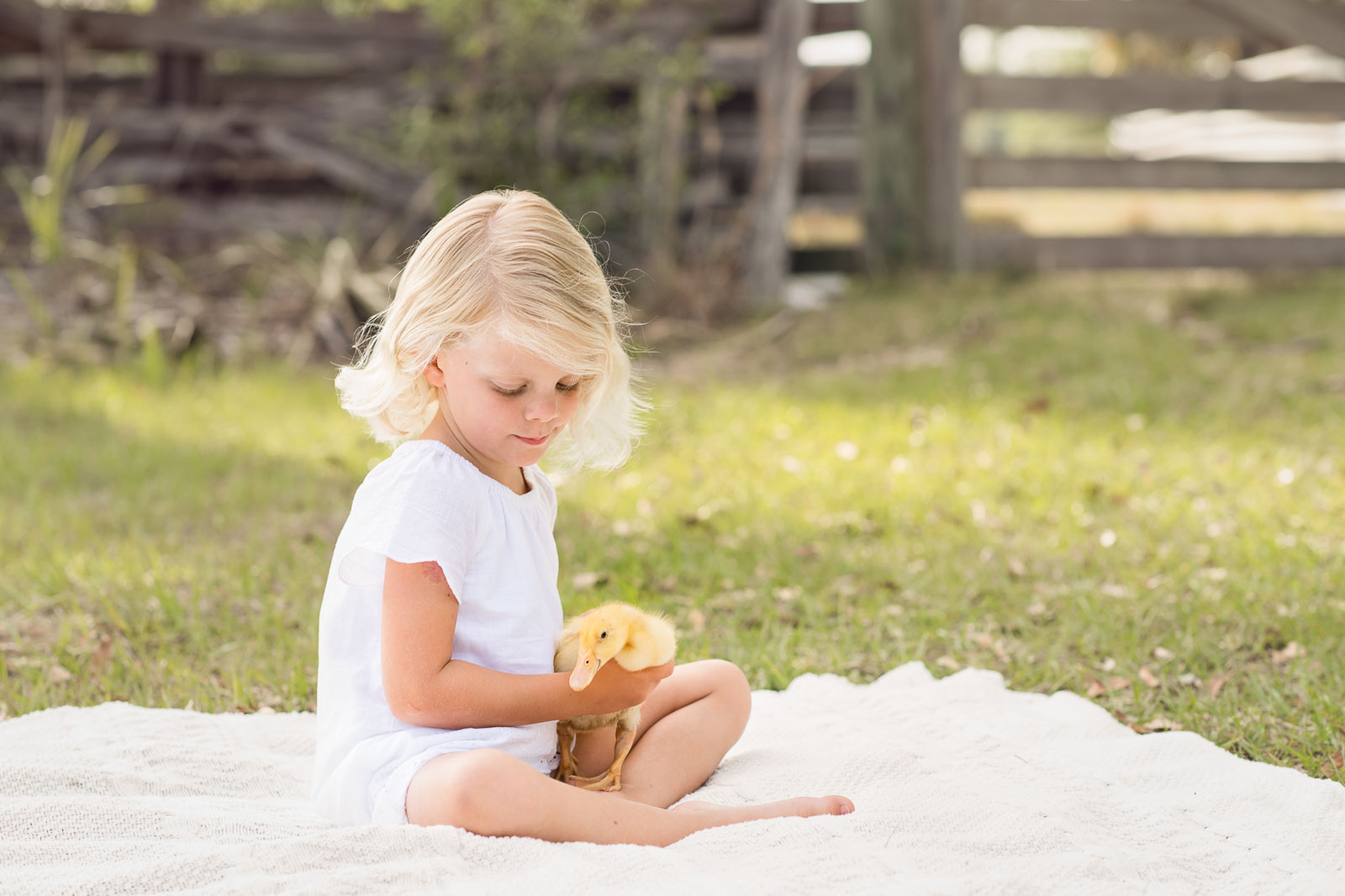 photo-sessions-children-animals-01.jpg