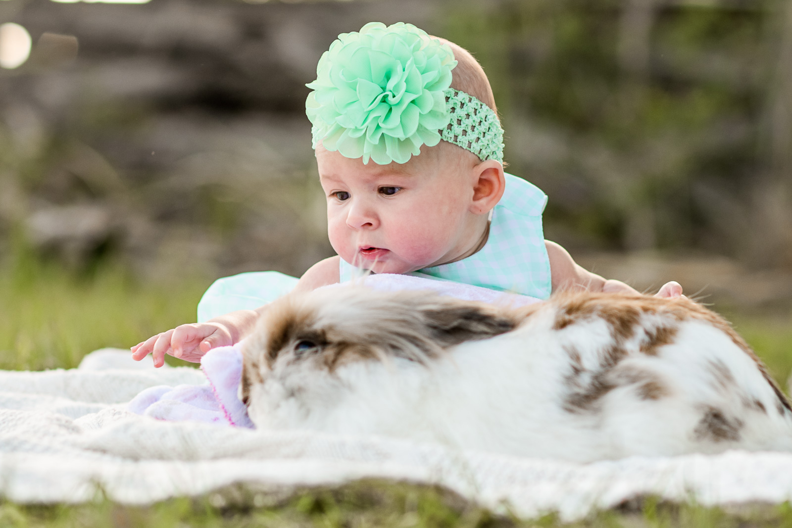 spring-photo-sessions-with-animals-vero-beach-03.jpg