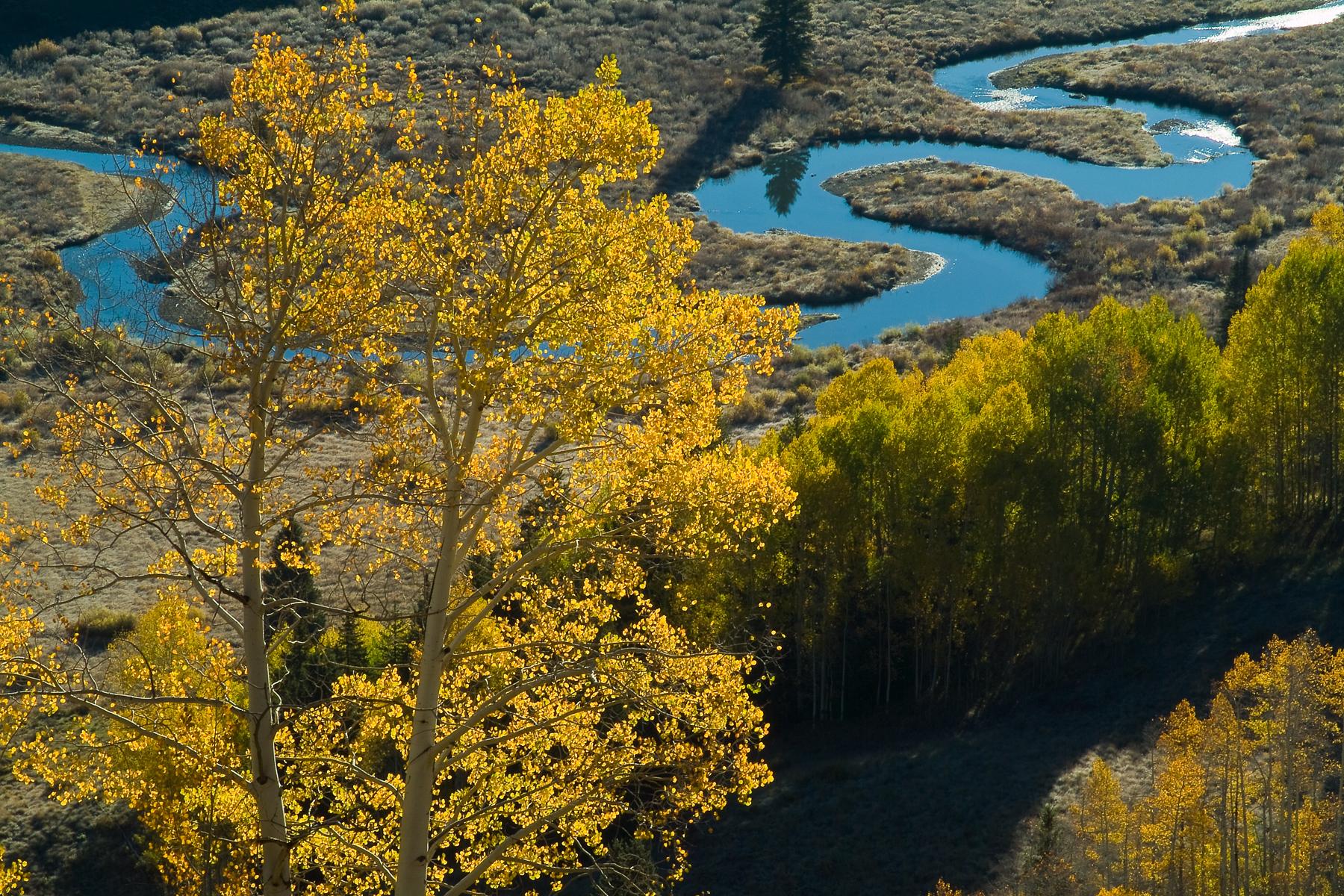 East Creek Meander