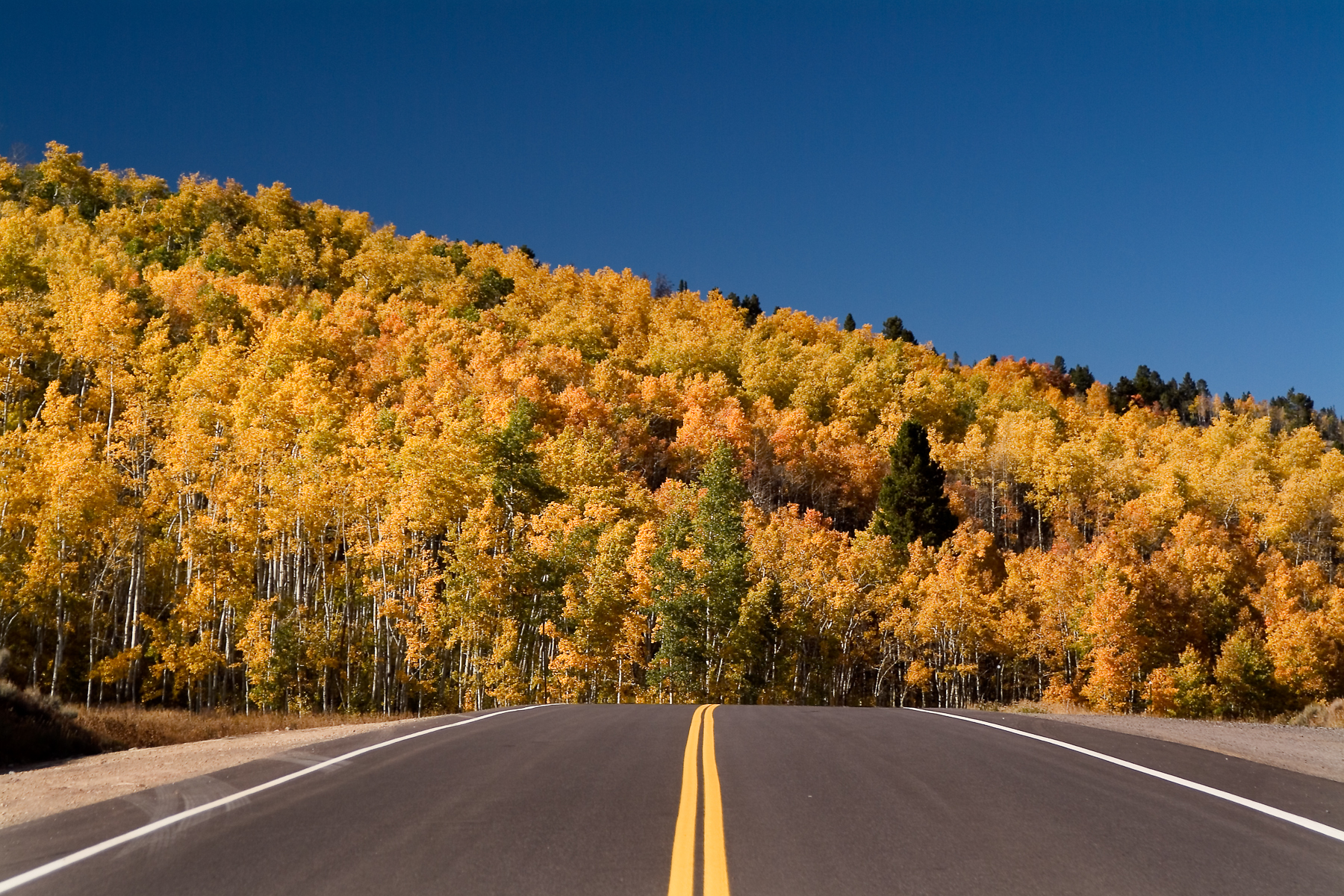 Oak Creek Pass Fall