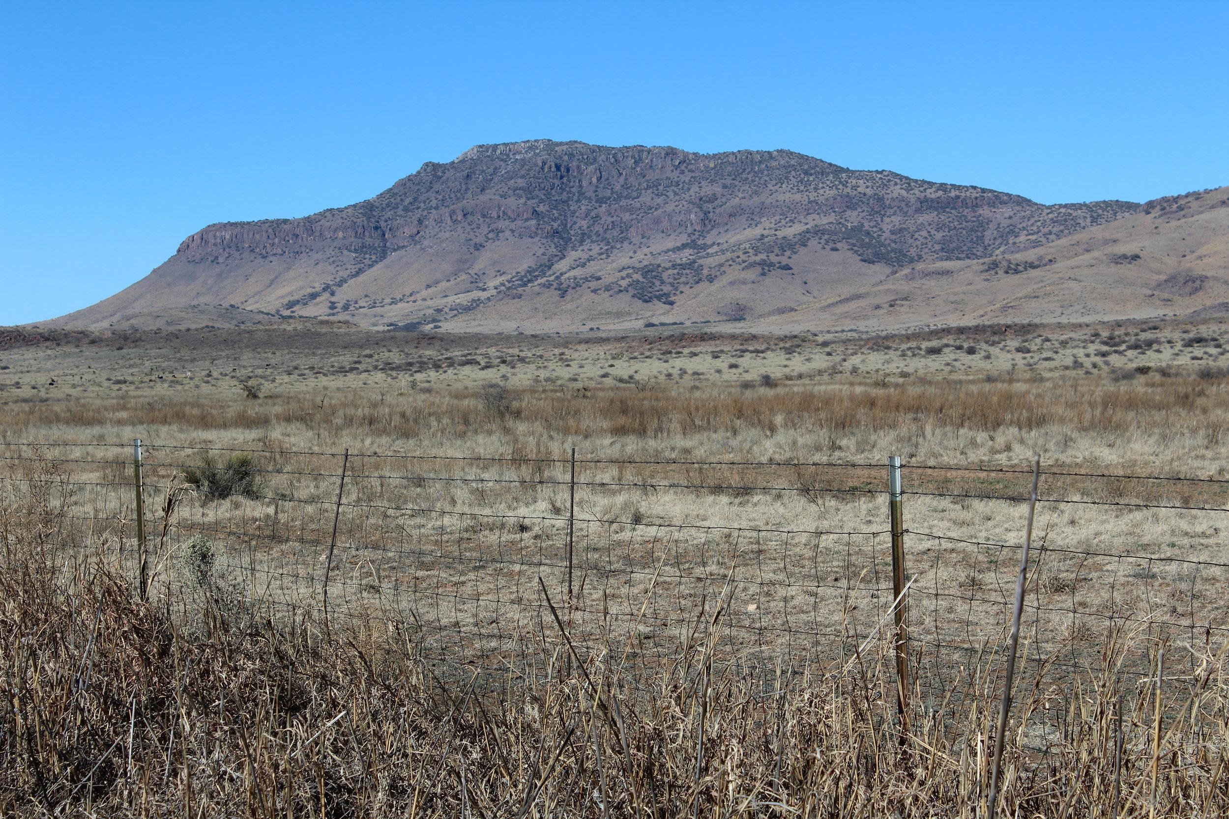 Blue Mountain, Texas Davis Mountains AVA