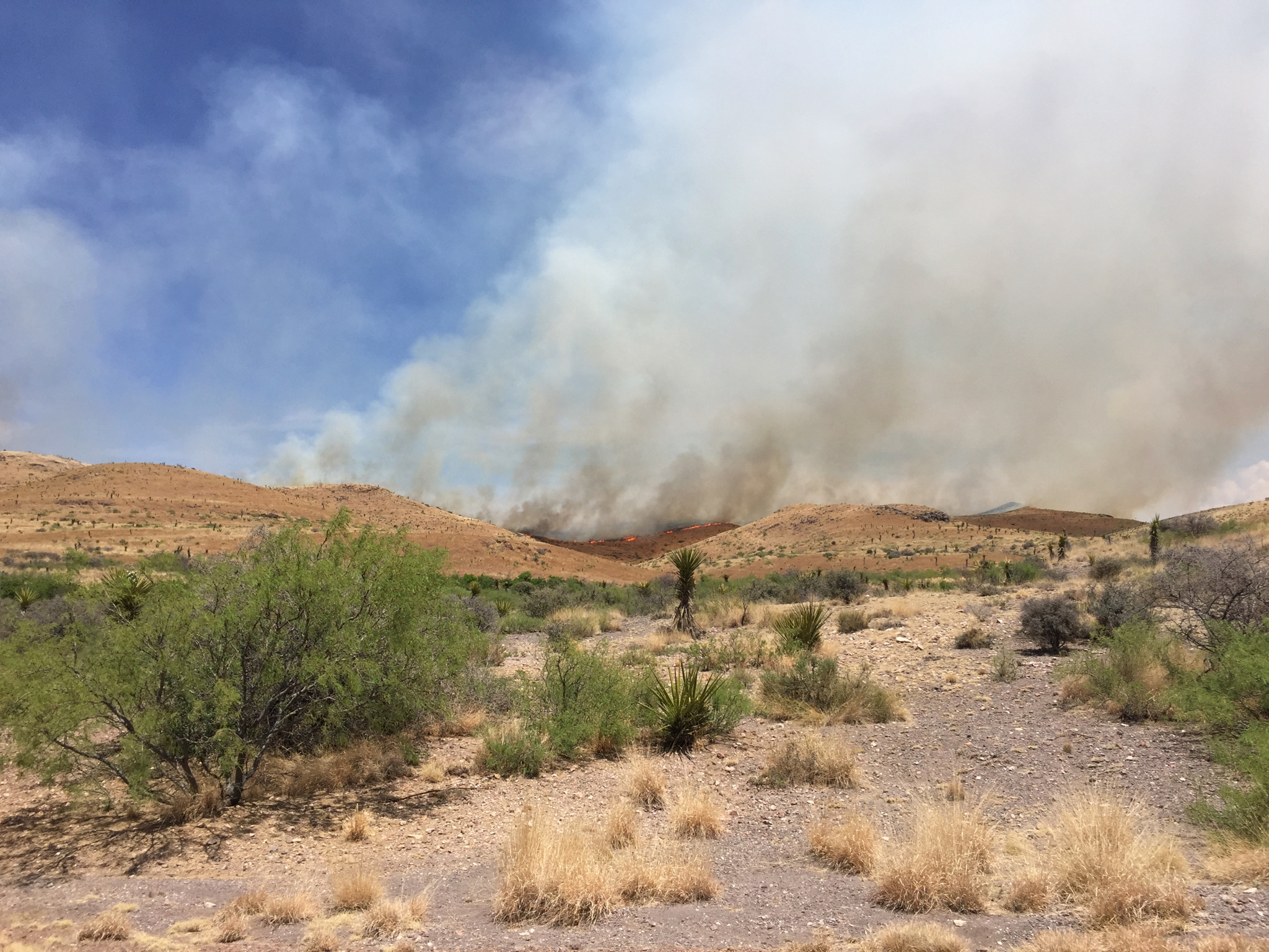 While i was struggling to fix the irrigation controller, a huge wild fire started just over the mountain and was filling the air with smoke. Fires can be extremely dangerous in the area because of the strong winds and the extreme dryness.