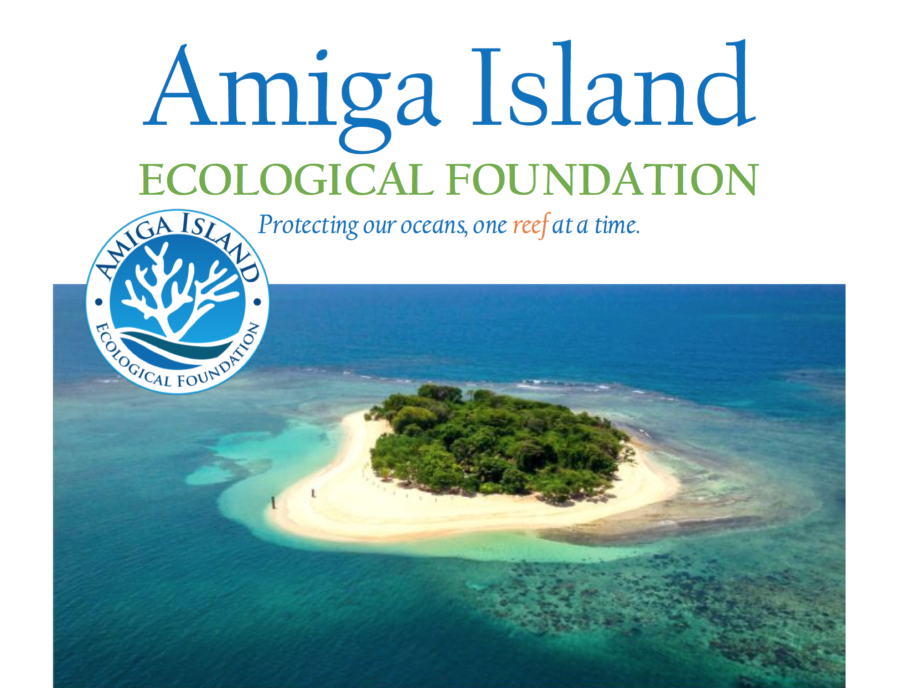 Our Partner, The Amiga Island Ecological Foundation Has Planted Countless Acropora Colonies In Haiti