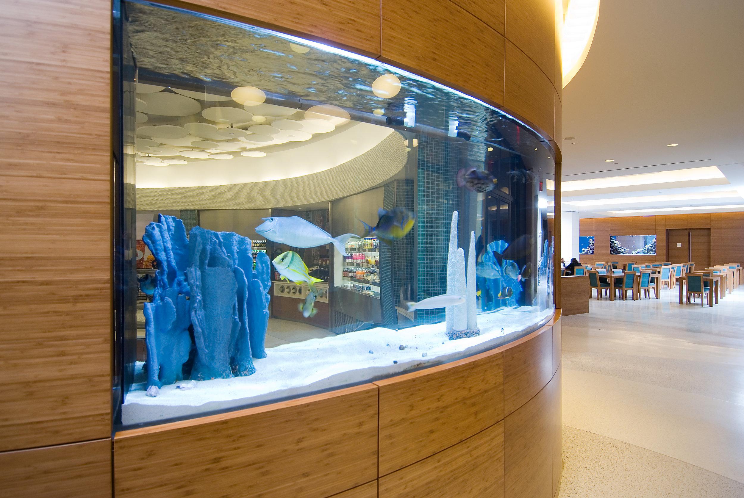 Corporate Cafeteria 1.jpg