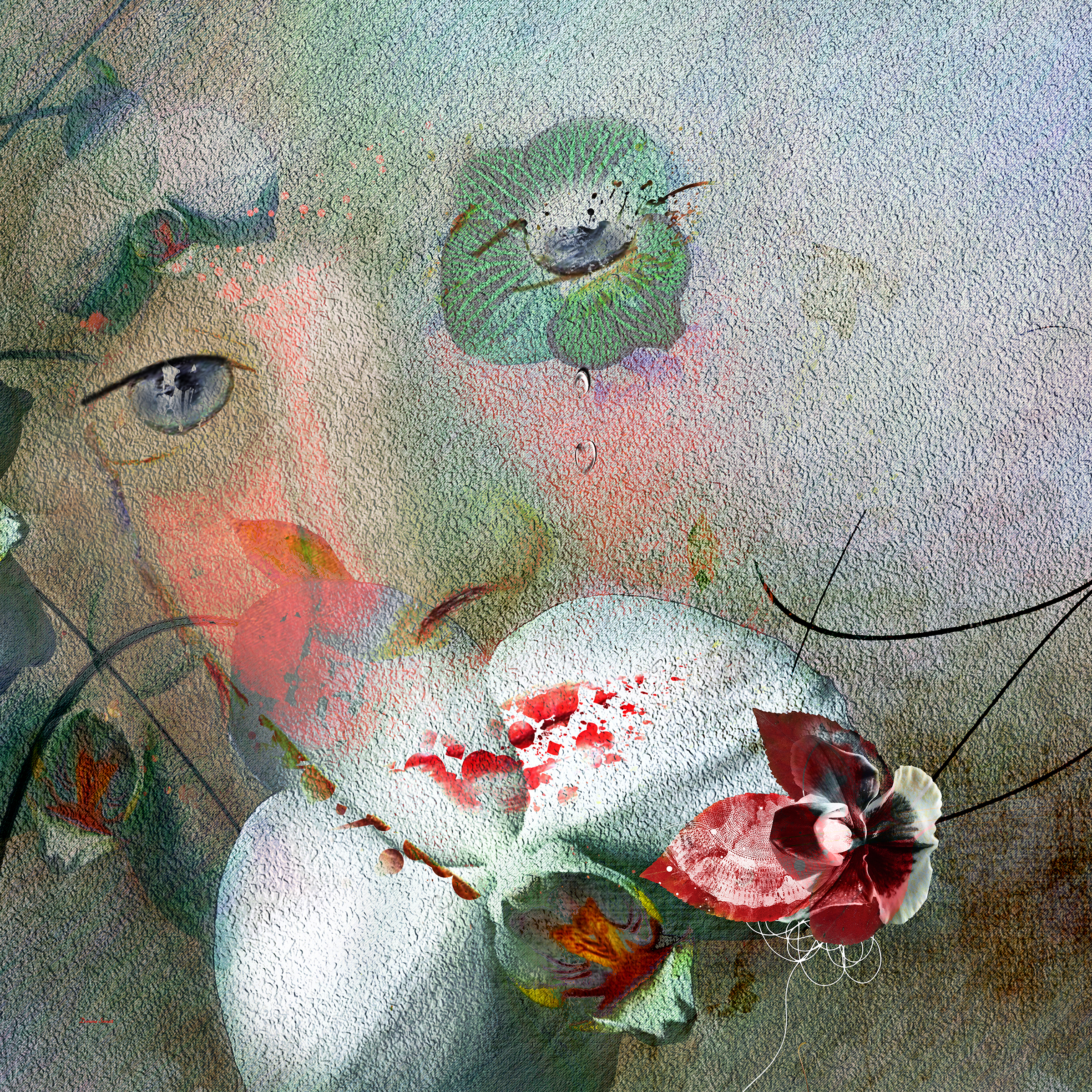 DorianaSinnett_Orchid Tears_.jpg