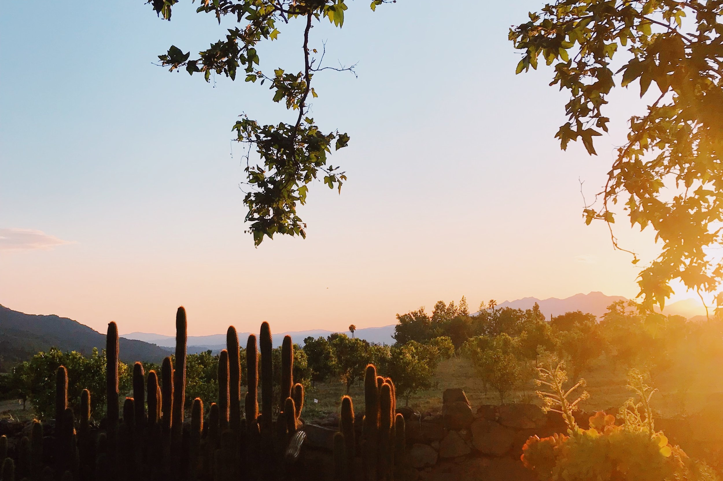 Ojai+Sunset.jpg