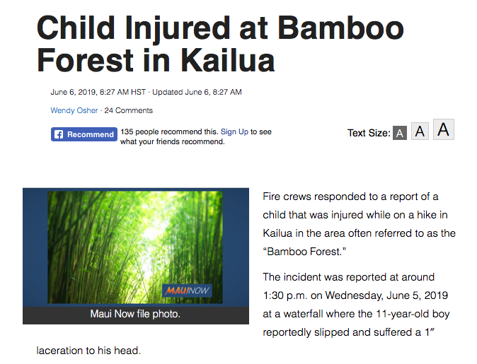 bambooforestmaui.png