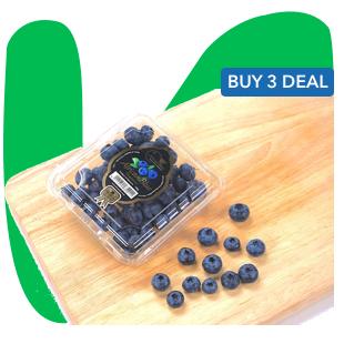 Blueberry v4.png