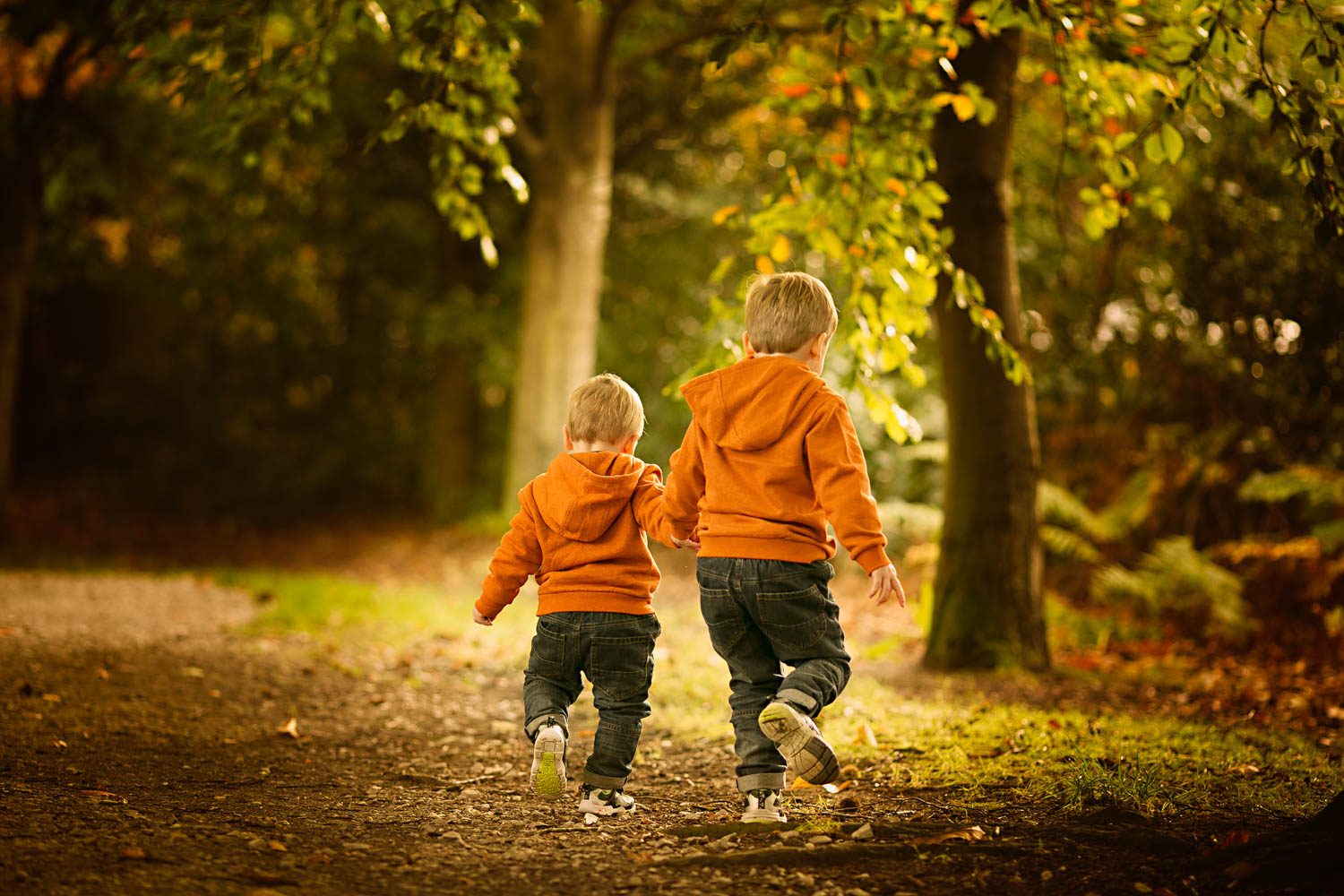 Young brothers holding hands during a family autumn portrait photosoot.