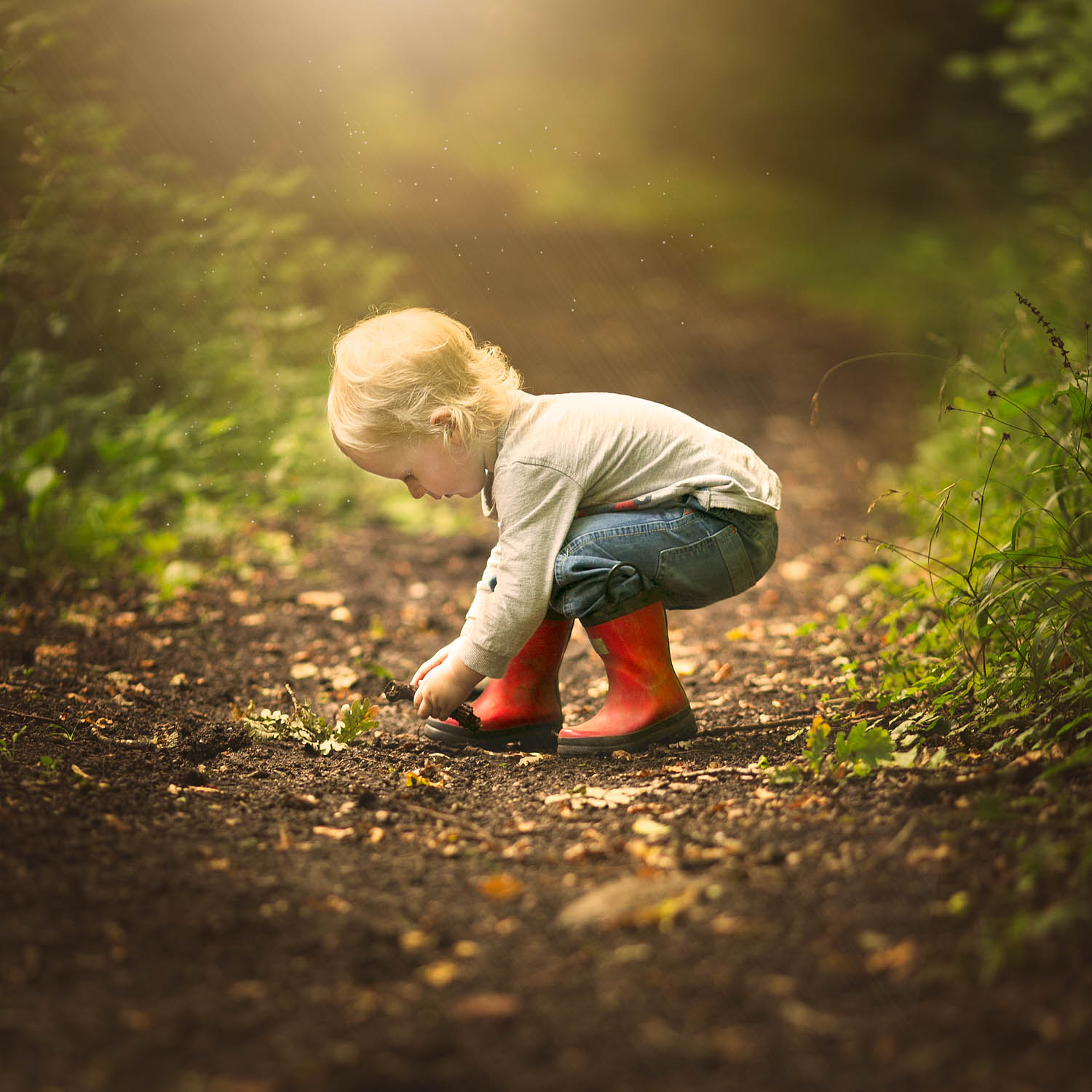 Child picking up leaves in red wellies during a photoshoot in Olney Buckinghamshire.