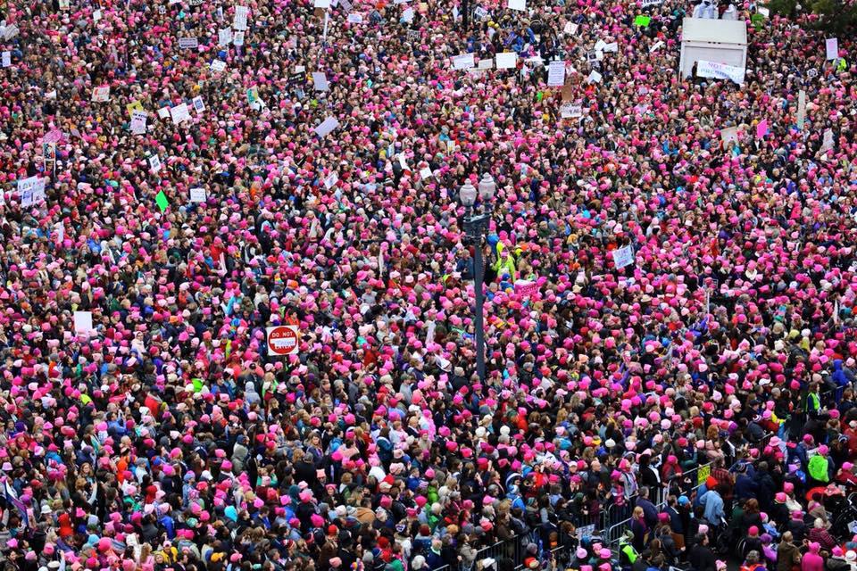 Women's March on Washington- January 21, 2017