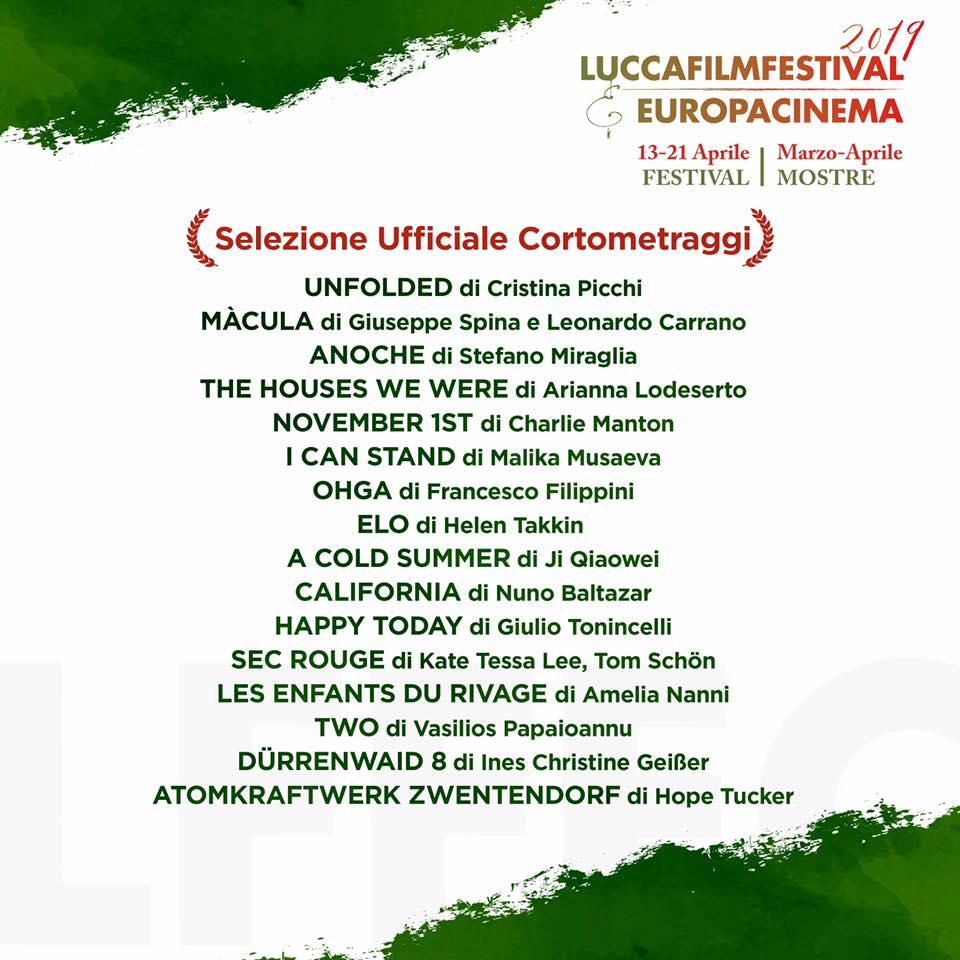 luccafilmfestival.jpg