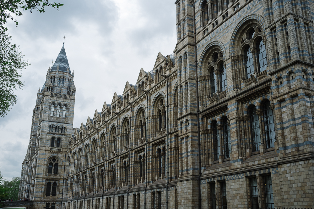 Beautiful architecture at the Natural History Museum