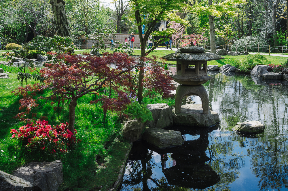 Japanese Garden, Holland Park