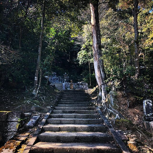 In #kyoto, always try to take the path less travelled... #kyoto #japan #hiking #walking #pathways #quiettime