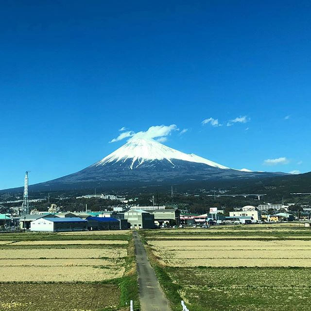 Mount Fuji from the bullet train heading to Tokyo.🗼We had a wonderful few weeks in Japan. 🇯🇵New blog posts to come! #japan #mountfuji #mountfujijapan #shinkansen🚄 #travelblogger #fujisan🗻