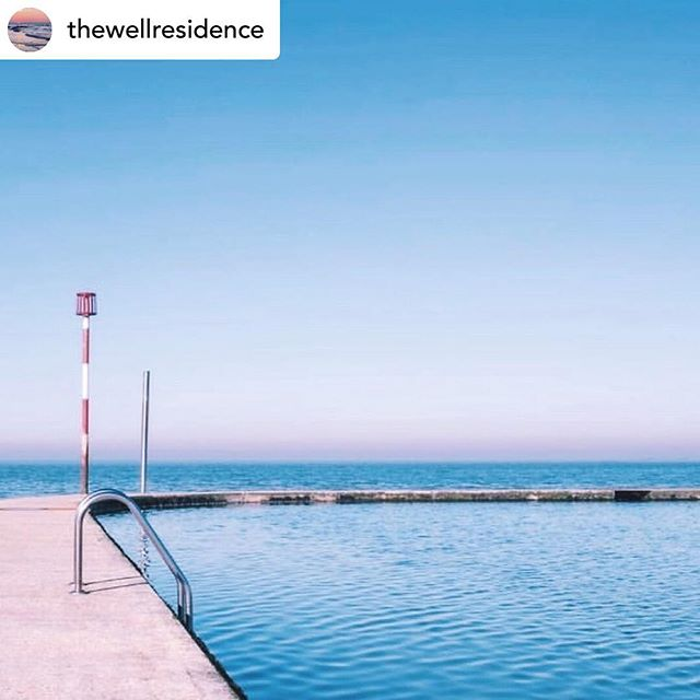 Gorgeous! We love #Margate! 🏖 Posted @withrepost • @thewellresidence F r e s h 🐬. Spring has officially sprung, who has been brave enough to swim in the Margate tidal pools? It is a bit chilly but it is 💫so💫 good for your soul.  We can't wait for a dip next week when we finally get to spend a few days back at The Well 🌴.