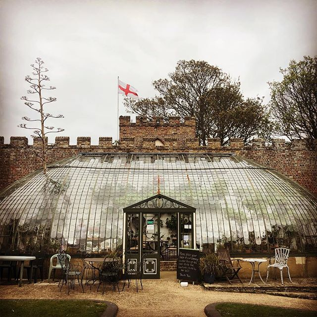 Wow! An architectural gem tucked away in Ramsgate. The @italianatetea is a gorgeous glasshouse where you can perch amongst the plants and enjoy fabulous homemade cakes 🍰🍰 or a full afternoon tea. It's charming - look out for a friendly robin flitting in and out through the open door! 🌵🌵🌳🌳 #italianate #teagarden #homemadecake #afternoontea #glasshouse #ramsgate #kentgardens