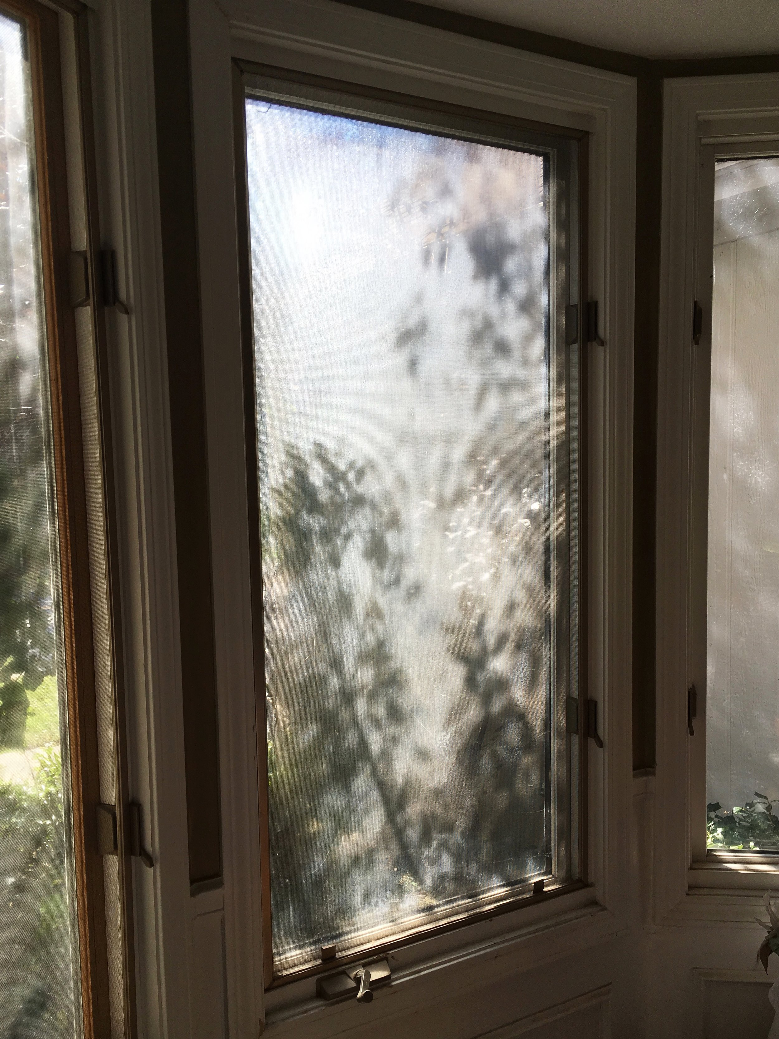 Dining Room Window.jpeg