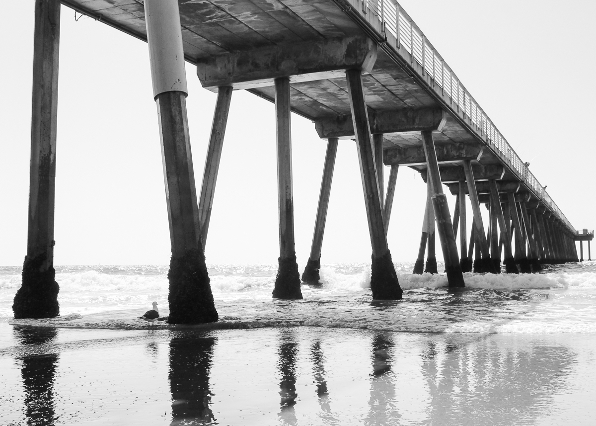 HERMOSA PIER FROM $25 USD