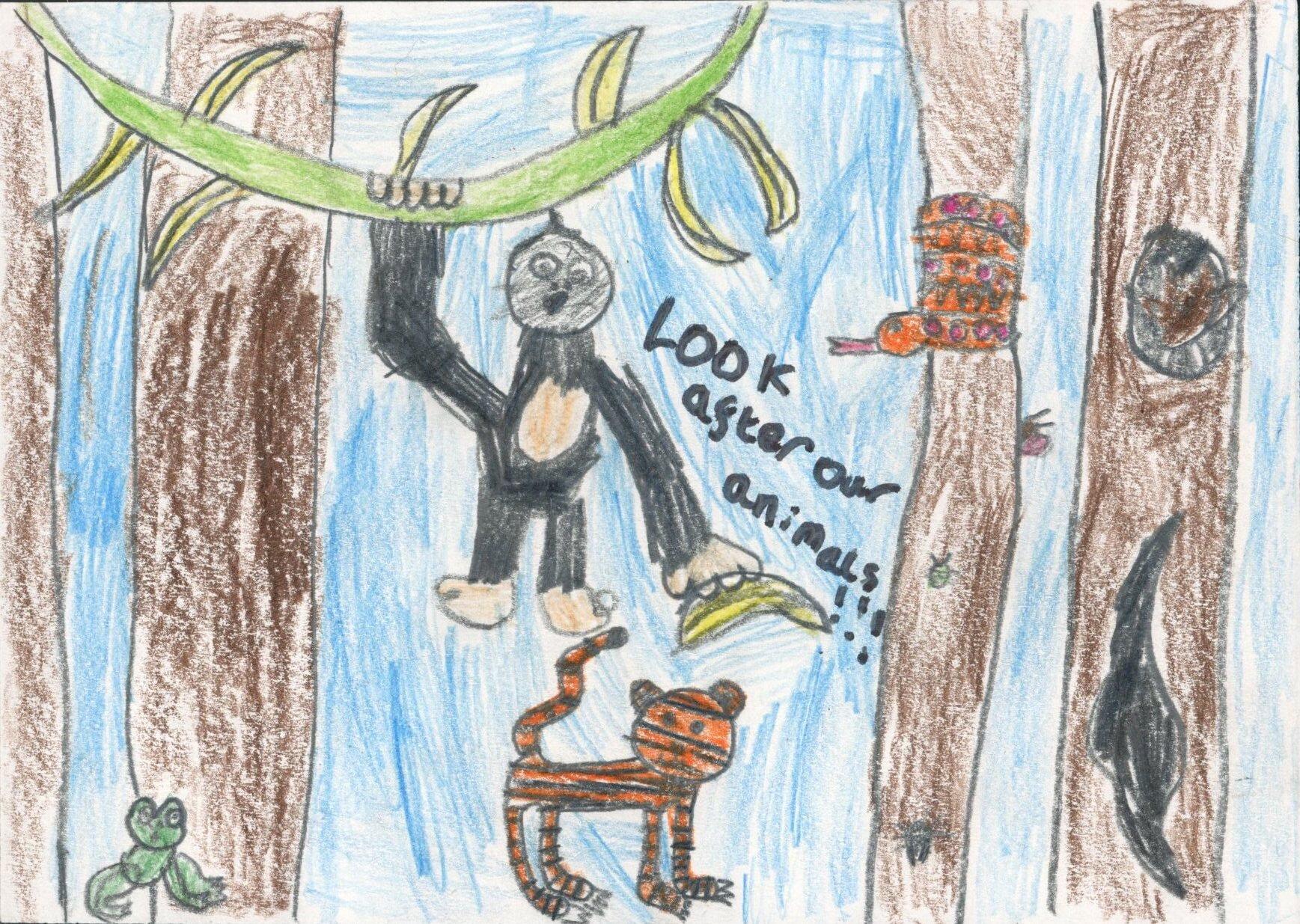 Prize Winner  Best Visual Message, Joni aged 7