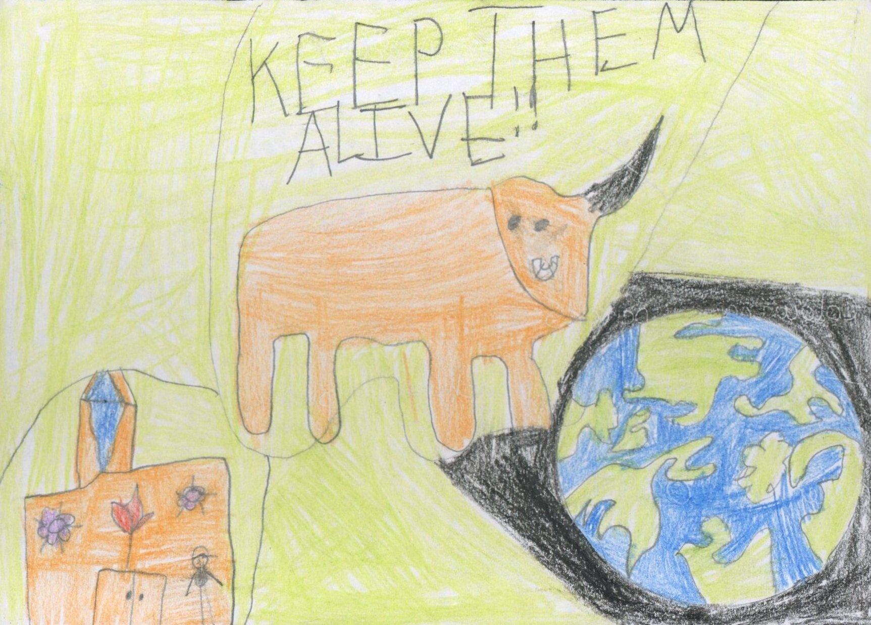 Prize Winner  Best animal extinction message  Caiden aged 8