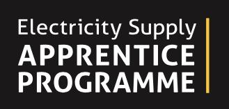 Electricity Supply Apprenticeship Program