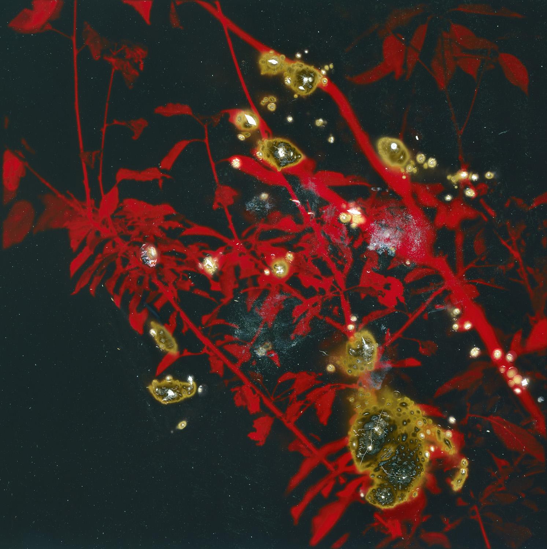 strom_10.jpg