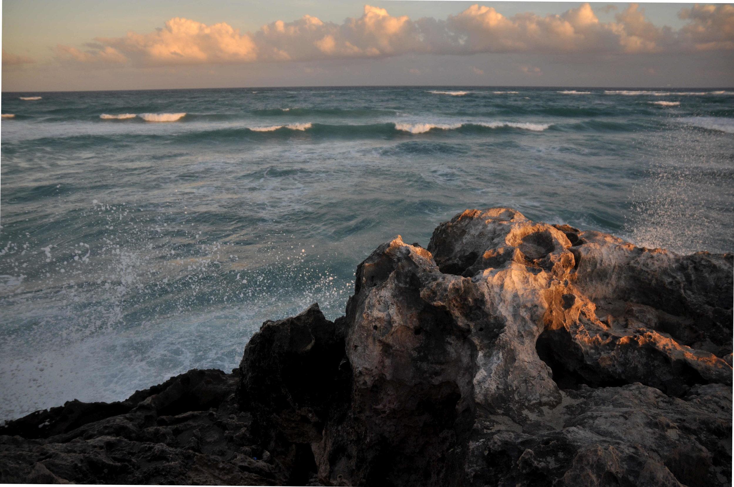 The ocean is healing
