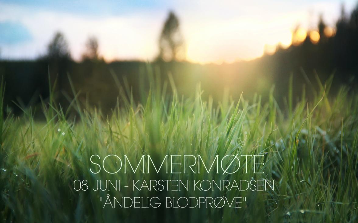 Sommermøte - Karsten Konradsen.jpg