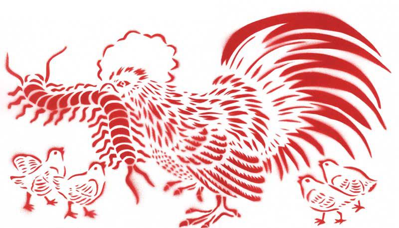 chickentop.jpg